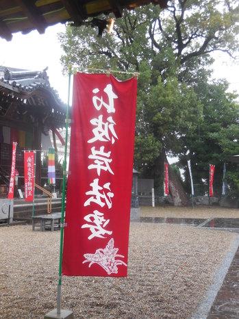 宝珠院4.JPG