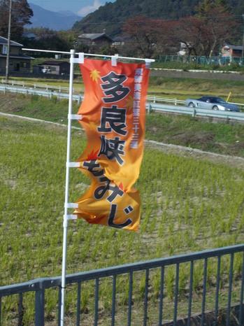 H30.11.11多良狭もみじ①.JPG