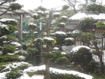 H30.12雪景色.JPG