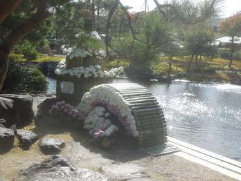 2019.11歩け歩け・白鳥庭園10.JPG