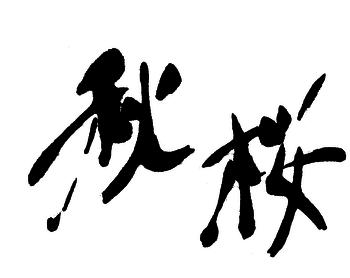 2019.11秋桜・登録済.png